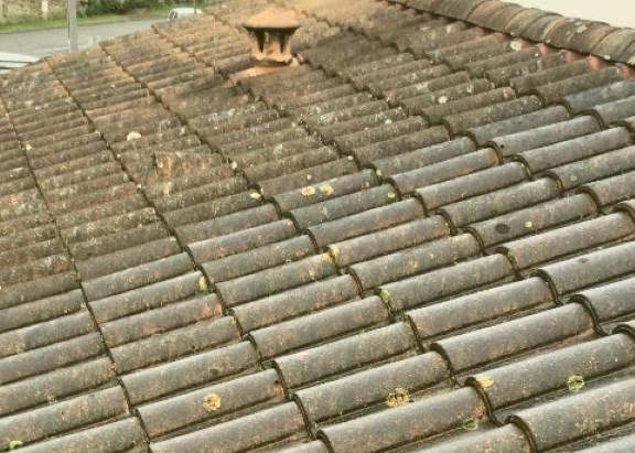 Demoussage et nettoyage de toiture avant recoupe